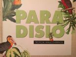 Paradisio Tropical By Erismann Wallcoverings
